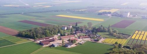 Dijon Field